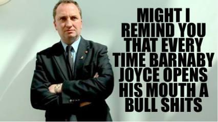 barnaby a bull shits