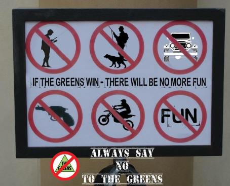 greens fun