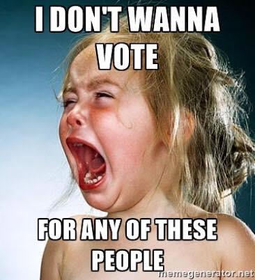 i don't wanna vote