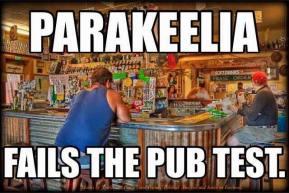 parakeelia pub test