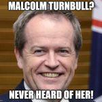 turnbull never heard of her